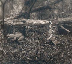 23 Il bambino E Il Suo bosco 5, 2005
