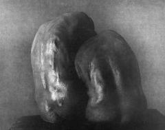05 lucida unione, 2006