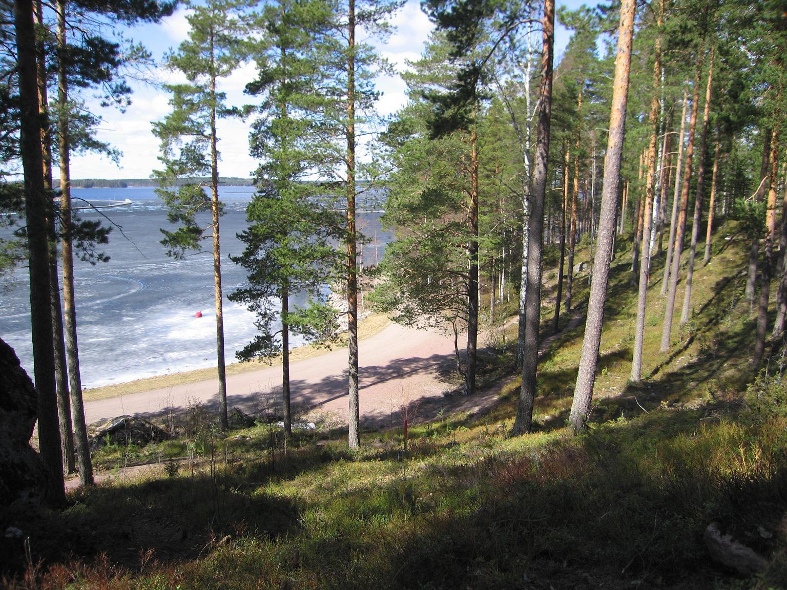 Вид на озеро Сайма