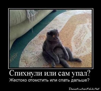 post-14-0-10863000-1369846628.jpg